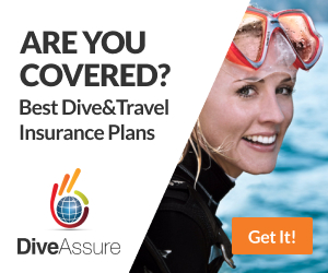 Dive Assure by Phuket Dive Tours