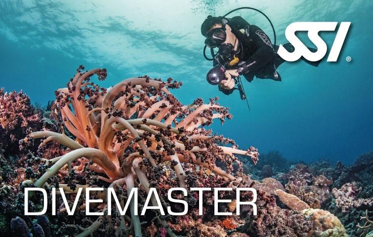 Dive master Internship