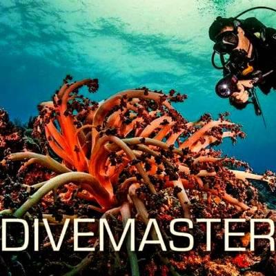 Divemaster course Phuket Thailand