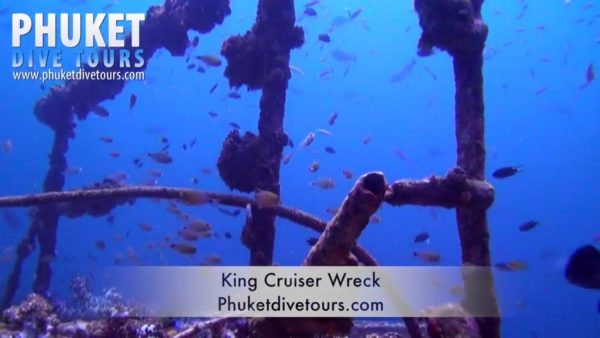 Best marine life in Phuket
