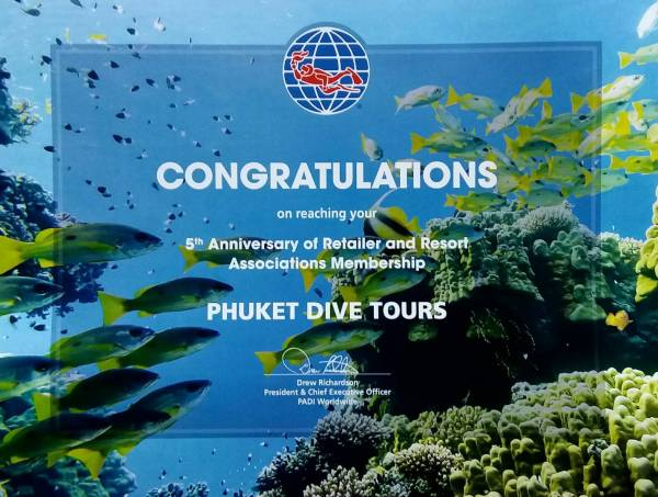 PADI diving phuket 5 years award - Phuket Dive Tours