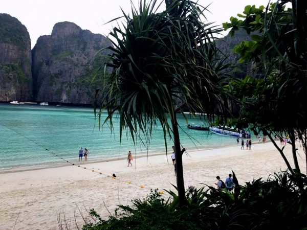 Phi Phi Maya bay the beach sunrise trip
