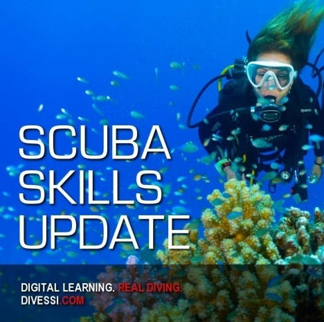 5c62791f8 Refresher Course Refresh   Update Your Scuba Skills - Phuket Dive Tours
