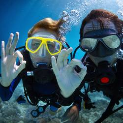 Scuba Diving DayTrips