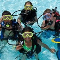 The PADI Seal Team is for young children who are looking for action-packed fun time in a pool learning to scuba dive while completing exciting Aqua-Missions.