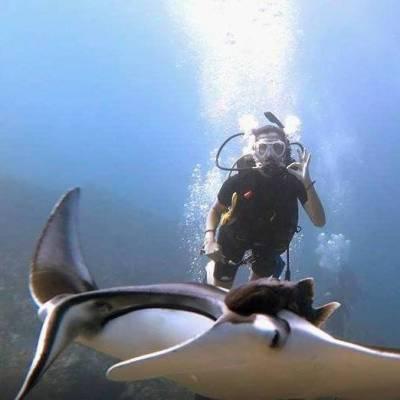 Similan Island 2 dives daytrip with Phuket Dive Tours