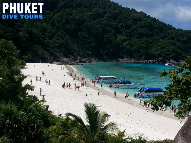 Similan Islands DayTrip Snorkeling Phuket Dive Tours