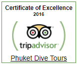 Trip Advisor Certificate of Excellence 2016 - Phuket Dive Tours