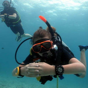 basic diver course for beginner