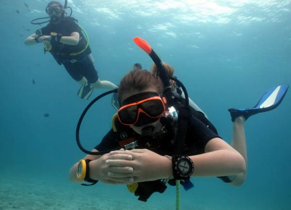 basic diver course for beginner