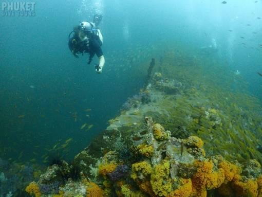 king cruiser wreck dive 2