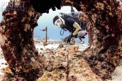 marine life at racha yai