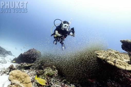 scuba diving at racha yai island