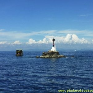 shark point scuba diving Phuket