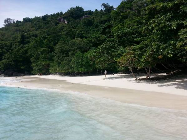 similan islands day trip