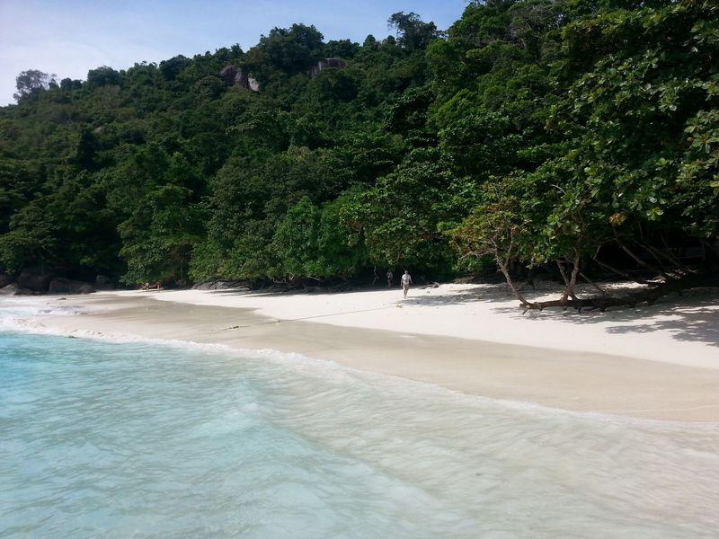 similan islands day trip