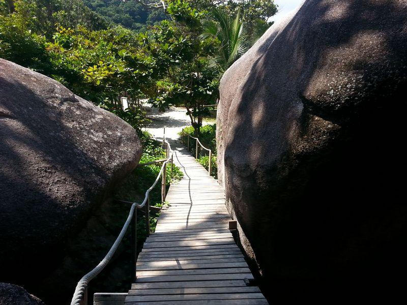similan islands walk up to sail rock