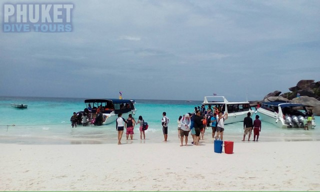 Similan island day trippers